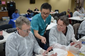 Dr. Jun Lim assisting Drs. Larry Smith and Doug Brown crop